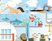 Illustratie cover KRW-jaarrapportage 2016: naar een betere ecologische waterkwaliteit