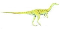 Dinosaurio Tachiraptor Admirabilis