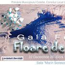 """""""Floare de ger"""" – gală de poezie, colinde şi muzică folk, la Calafat"""