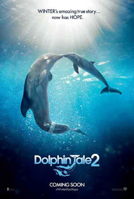 Dolphin Tale 2 (2014) Sinopsis