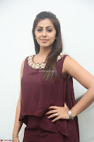 Nikki Galrani in a Brown Shining Sleeveless Gown at Nakshatram music launch ~  Exclusive 005.JPG