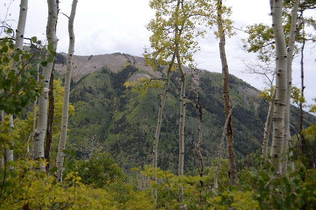shoulder of Silver Mountain