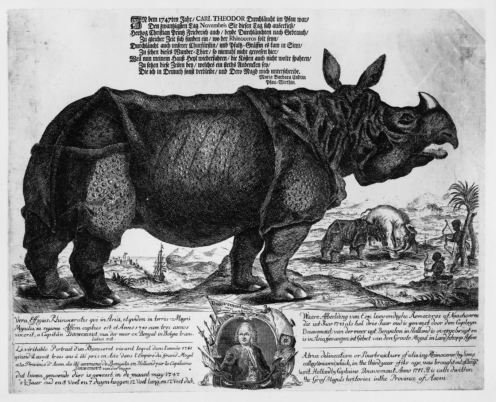 H. Oster, A. A. Beck y J.G. Schmidt, La rinoceronte Clara