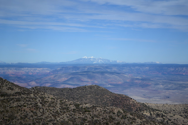 San Francisco Peaks as points of white against the blueish sky