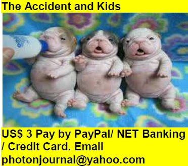The Accident and Kids Book Store Buy Books Online Cash on Delivery Amazon Books eBay Book  Book Store Book Fair Book Exhibition Sell your Book Book Copyright Book Royalty Book ISBN Book Barcode How to Self Book