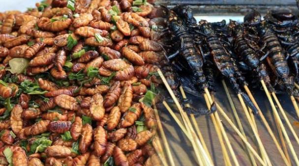 6 Kuliner Serangga Di Indonesia Yang Perlu Kamu Coba