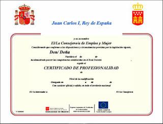 Certificado De Profesionalidad En Pintura Decorativa En Construcci Ef Bf Bdn Nivel