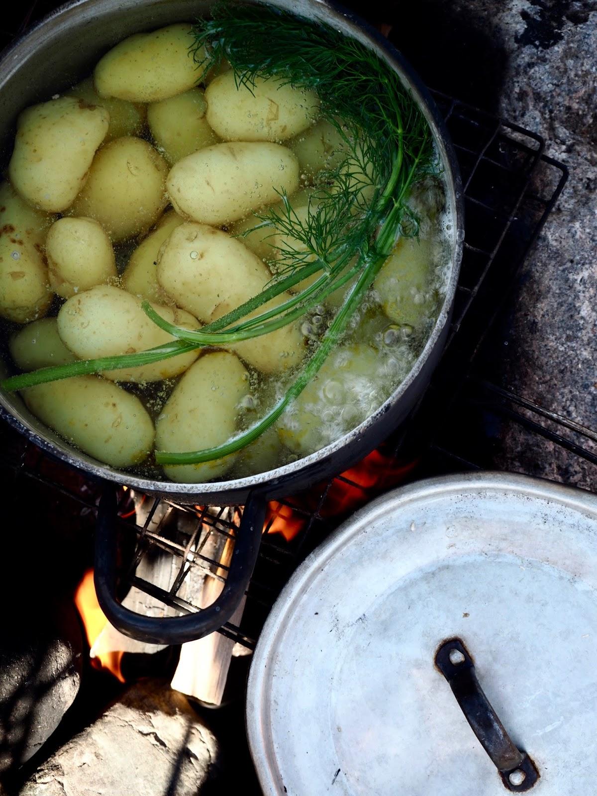uudet perunat, siklit