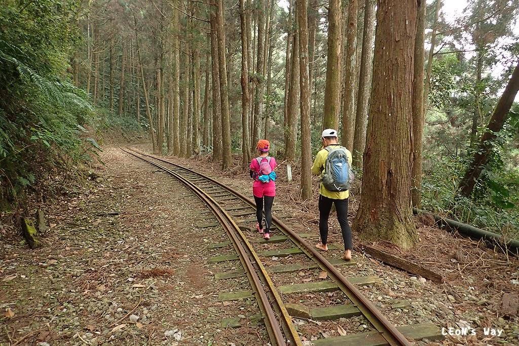 LEoN's WAY~: 2015_0322 來吉十字路古道→多林火車站→杜仔湖步道→來吉