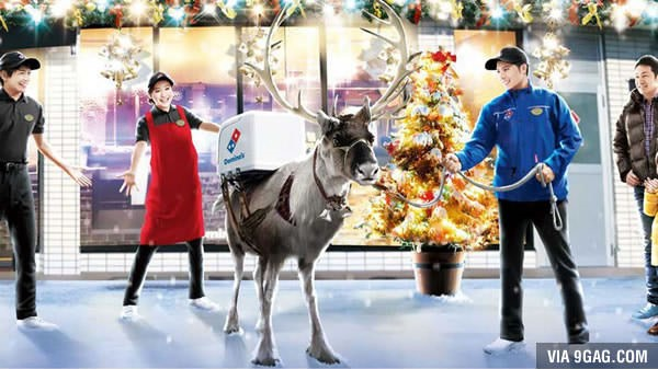 Domino´s Japón está entrenando renos para que entreguen