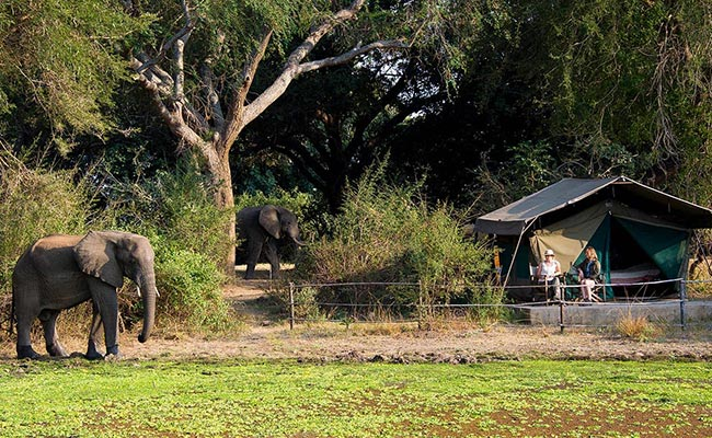 www.xvlor.com South Luangwa National Park