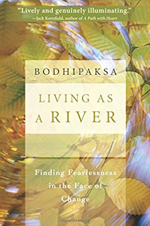 Book Living as a River