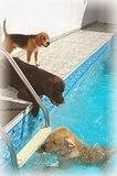 escadas de piscinas