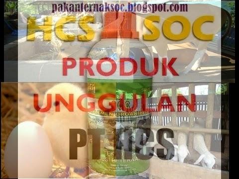 http://pakanternaksoc.blogspot.com