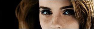 http://love-greatest-magic-dramione.blogspot.com/