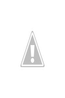 Vestido rojo con zapatos animal print