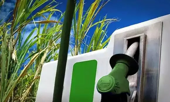 Resultado de imagen para usina de etanol brasil