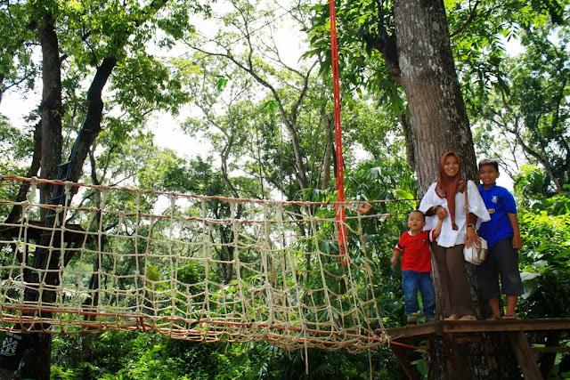 Canopy traill di Rest Area Urug tidak terlalu tinggi tapi cukup  menantang