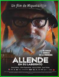 Allende en su laberinto (2014) | DVDRip Latino HD Mega 1 Link