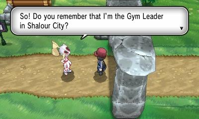 Pokemon Y version Screenshot-3