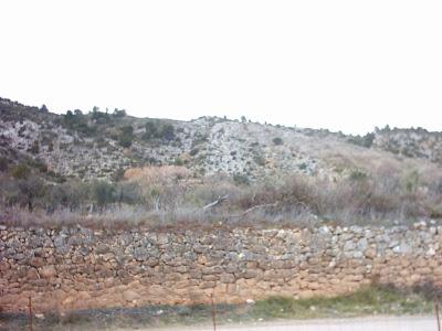 los olivares ,camino ,pantano de Pena, Beceite, Beseit, piedra, pared, muro, finca