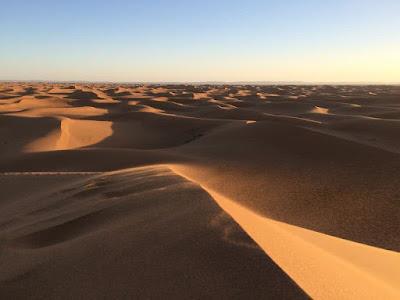 Arabian Desert, Southwestern Asia