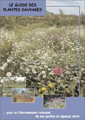 Télécharger Livre Gratuit Guide des plantes sauvages pdf