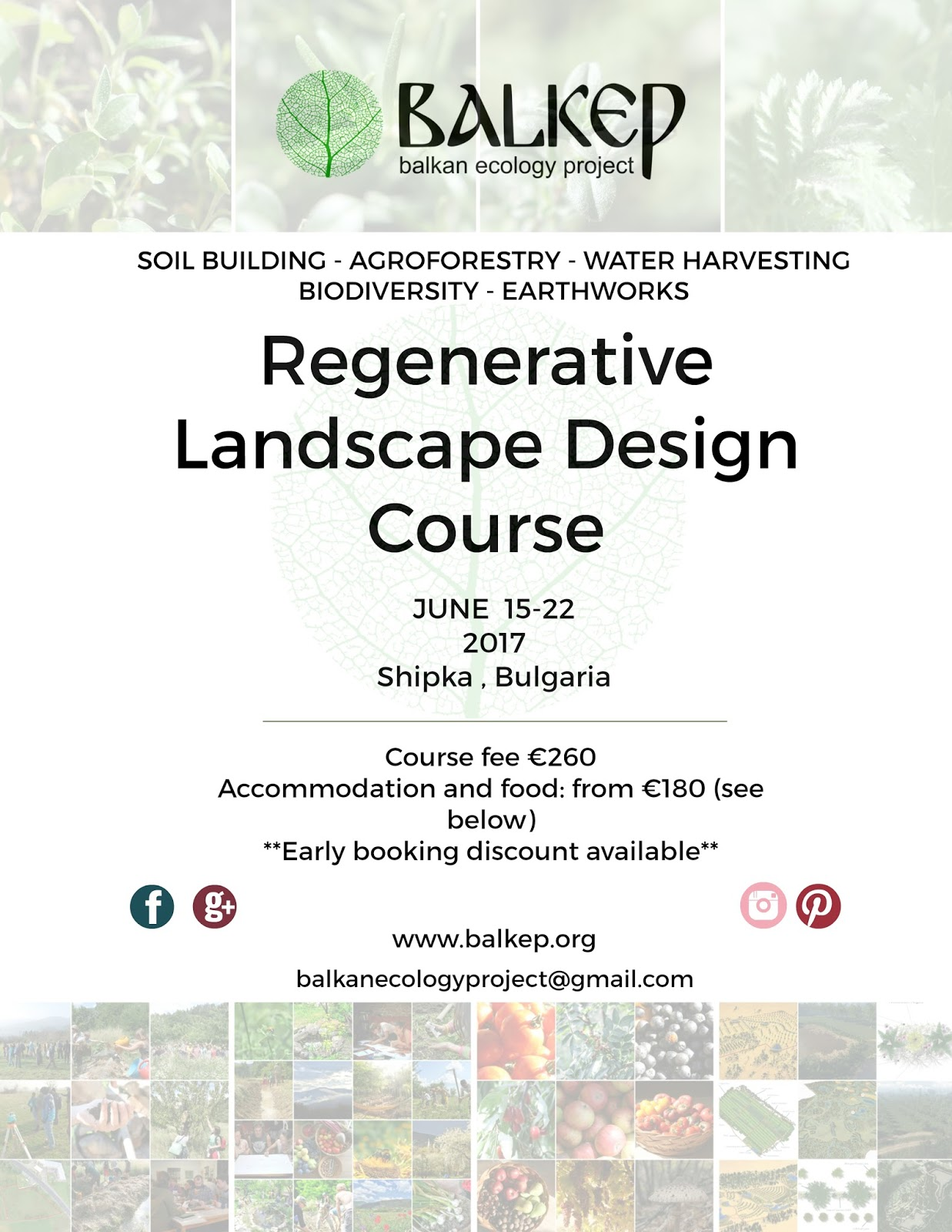 Balkan ecology project the polyculture market garden for Learn landscape design