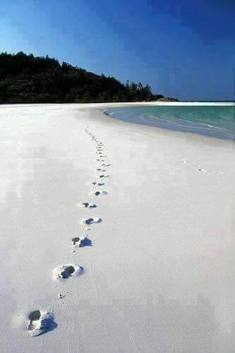 Beach - Australia's Whitehaven