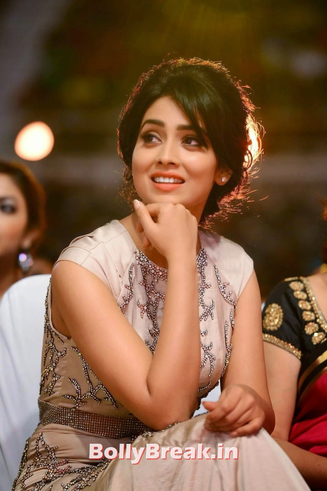 , Shriya Saran Hot Images from SIIMA Awards 2014