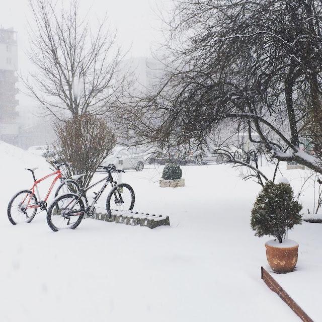 vienna snow day
