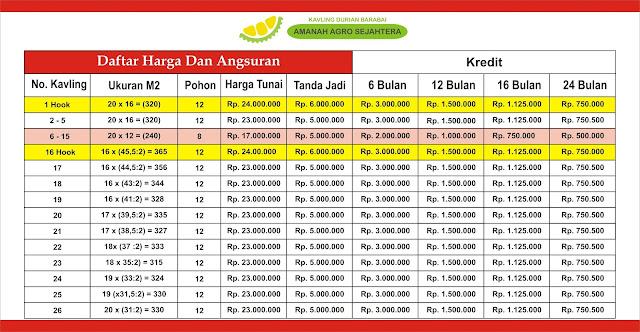 Harga dan Angsuran Kavling Durian Musang King Barabai