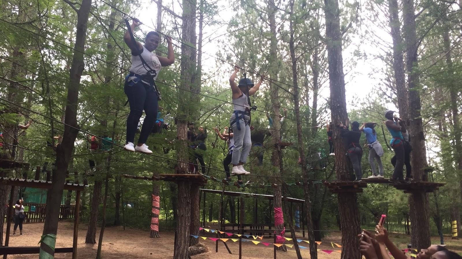 Team Building Activities By Teambuilding Fm Treetop