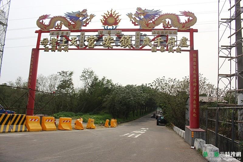 [臺灣.嘉義] 嘉義最佳賞花景點 全台最長苦楝花隧道
