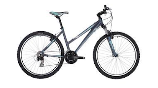 Stolen Bicycle - Raleigh Talus 2.0