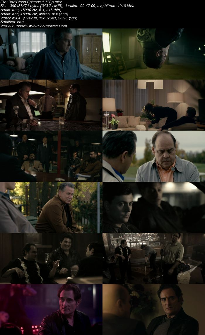 Bad Blood 2017 S01 Complete 720p Dual Audio Hindi 720p 480p