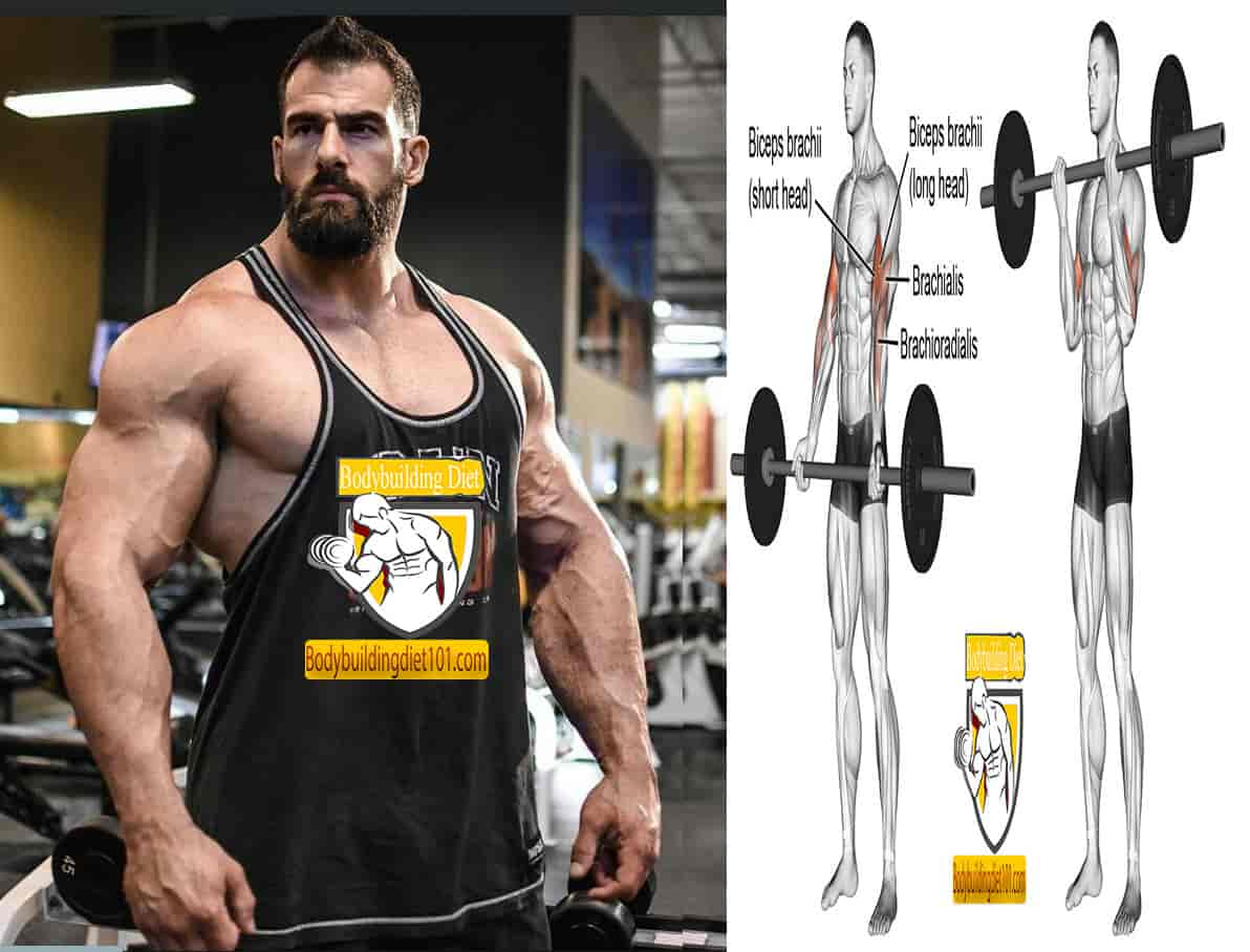 The standing barbell curls will target your biceps
