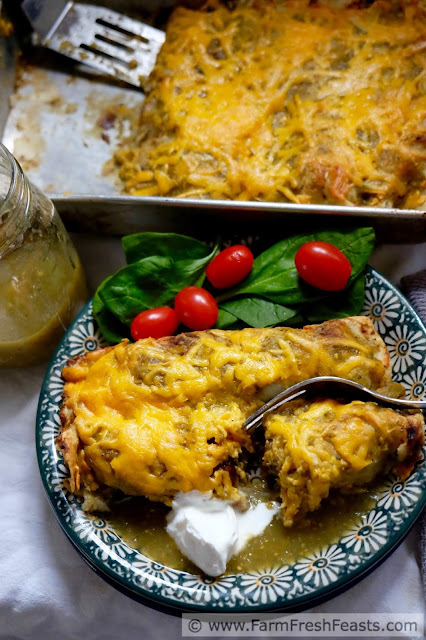 Creamy mashed potatoes and tender tatsoi greens, flavored with caramelized onions and salsa verde, fill these vegetarian enchiladas. Topped with plenty more salsa verde and cheese, it's a filling meal.