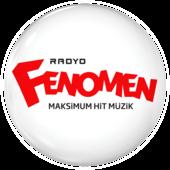 Radyo Fenomen Yabancı Top 40 Listesi Full Albüm İndir Ekim 2016