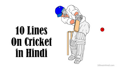 10 Lines On Cricket In Hindi