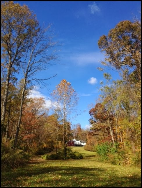 Beautiful Fall Weather @ My Cottage | Content in a Cottage
