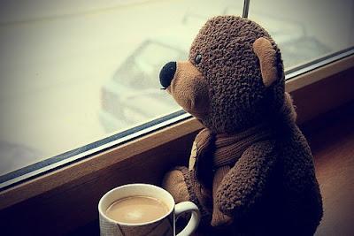 teddy,30d,canon,hombre 11c0528c9741615eb8d8e89bcf015fcc h PHP = Penyebab Galau Remaja Masa Kini