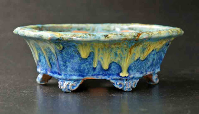 The 'Starry Night' Bonsai pot and other beautiful pieces