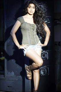 Shriya Saran Hot Thigh Show Pics