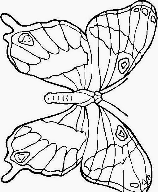 Disegni Da Colorare Di Farfalle