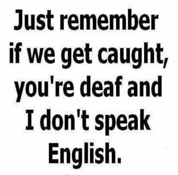 Funny Bestie Quotes Funny Friendship Quotes In English Bestie Quotes