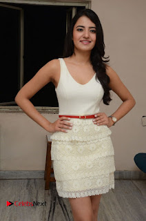 Actress Ruksaar Mir Pictures in Short Dress at Showtime Movie Logo Launch 0022