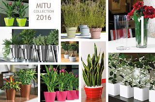 Barnaplant presenta la coleccion Mitu de macetas y jardineras 2016