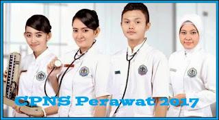 cpns perawat 2017