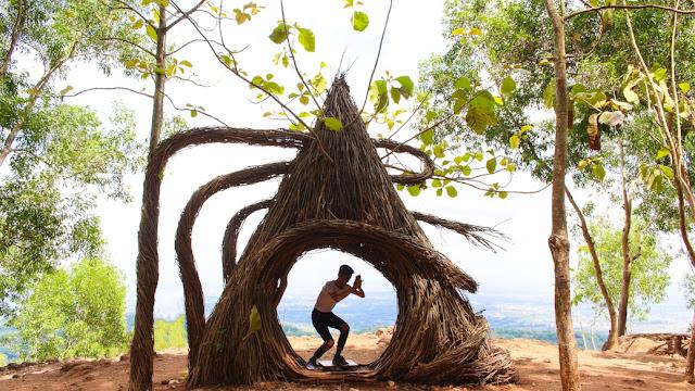 spot foto hutan pinus bantul